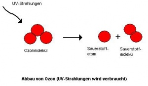 Ozon Bs Wiki Wissen Teilen